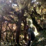 [HORTIK ZIHAR] Ainhoa Elorza Zelanda Berrian