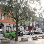 Laranjadi plazan gaixorik zeuden zuhaitzak aldatu dituzte